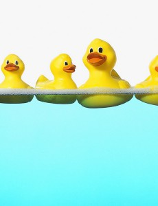 Rubber ducks floating on soap sud --- Image by © DK Limited/Corbis